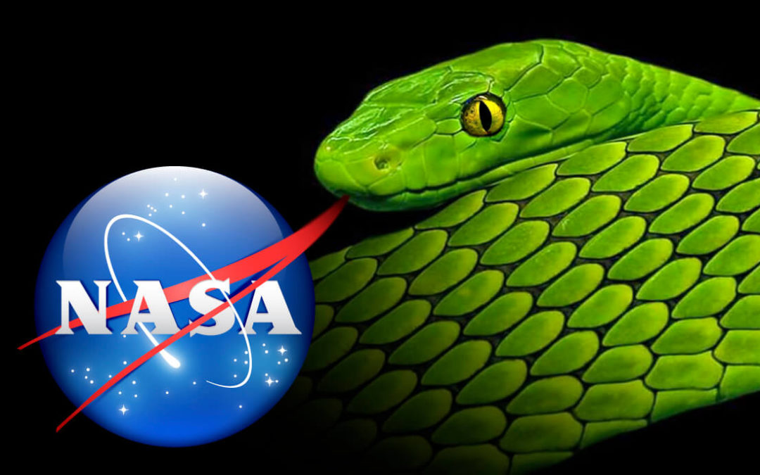 NASA Serpent, Forked Tongue, Icon, Logo